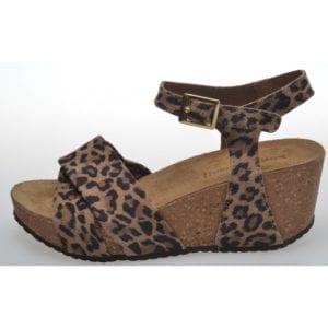 ELENA LEOPARD,  Brown leopard