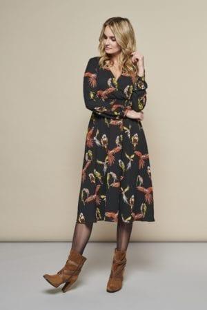 Parrots Dress